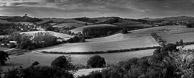 Colmers Hill, Symondsbury Dorset